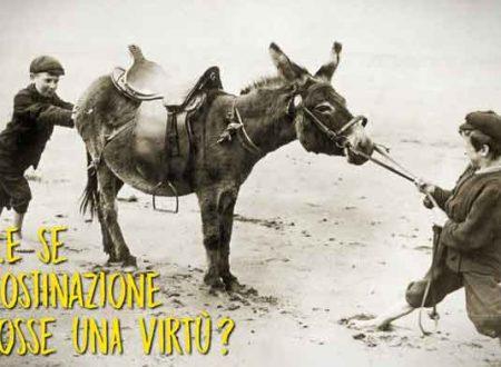 L'ostinazione una virtù