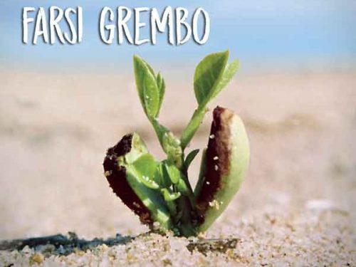 Farsi grembo